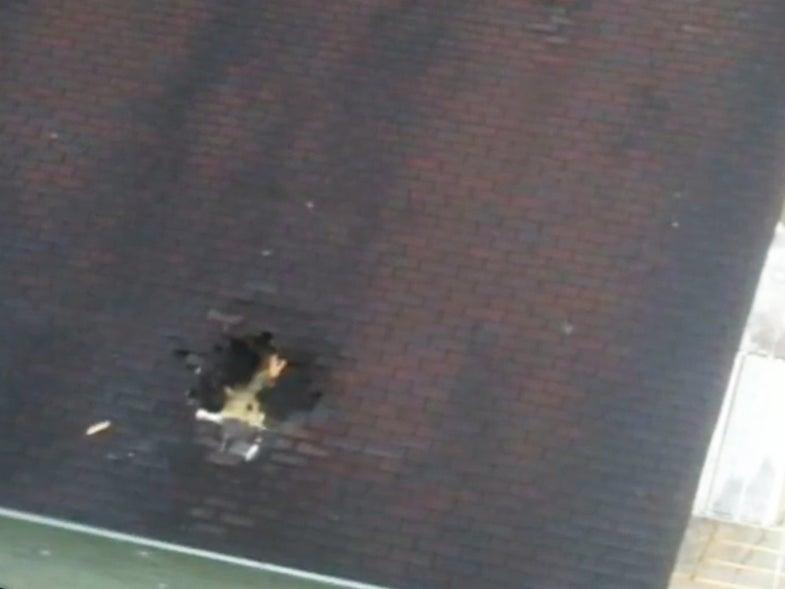 Buck Survives 40-Foot Fall Through Garage Roof