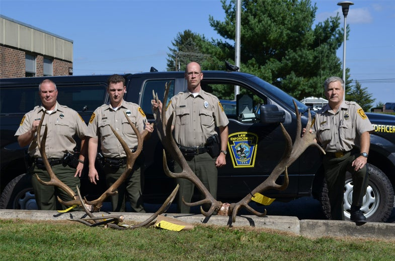 Poachers Killed One of the Largest Elk in Pennsylvania History