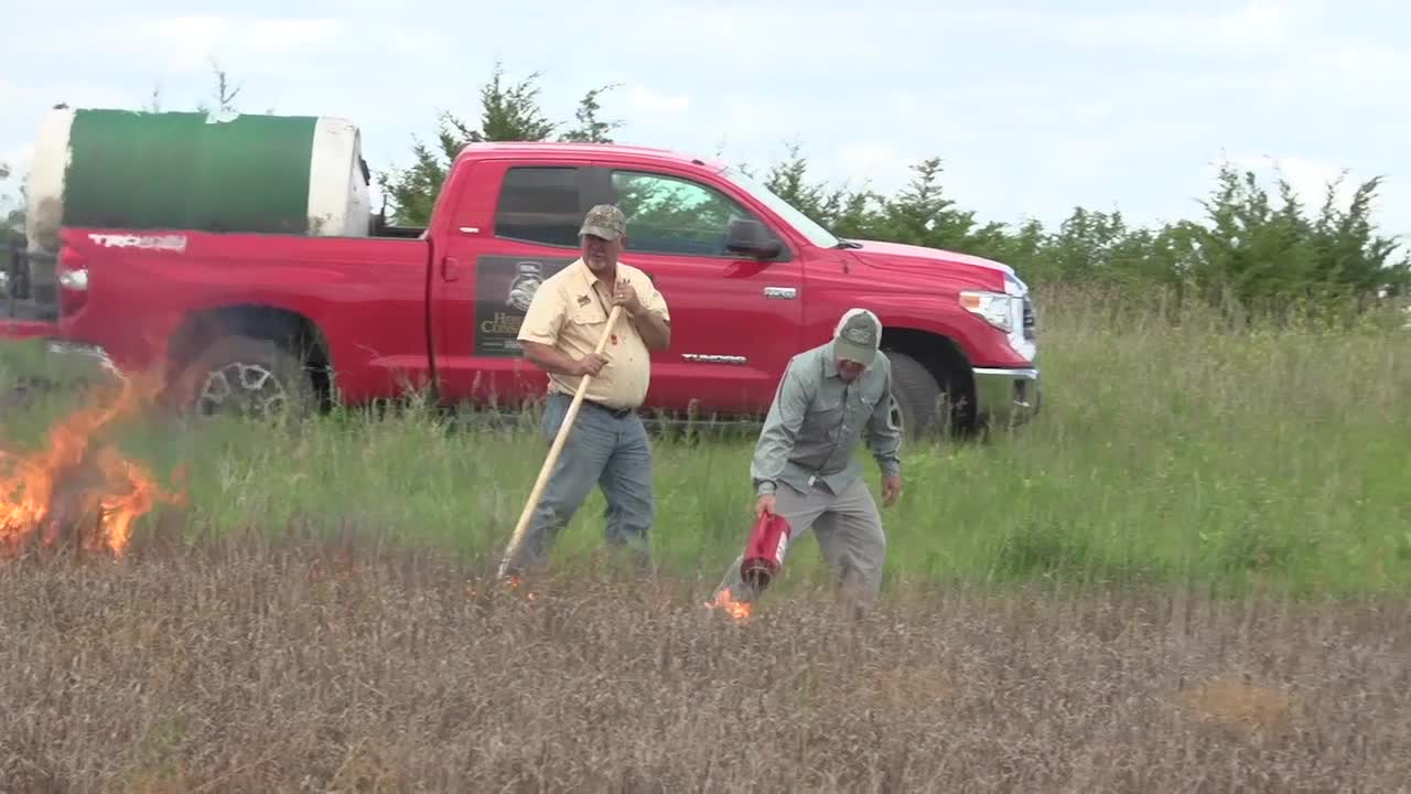 Heroes of Conservation Finalist: Protecting Grasslands for Minnesota Pheasants