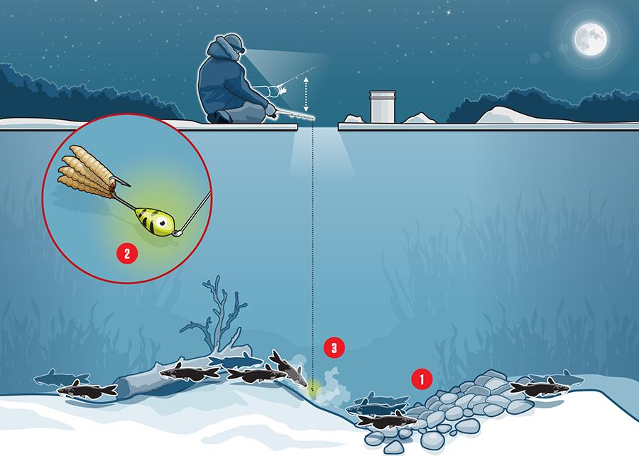 Illustration depicting ice fishing tips for catfish.