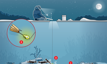 How to Catch Winter Catfish Through the Ice