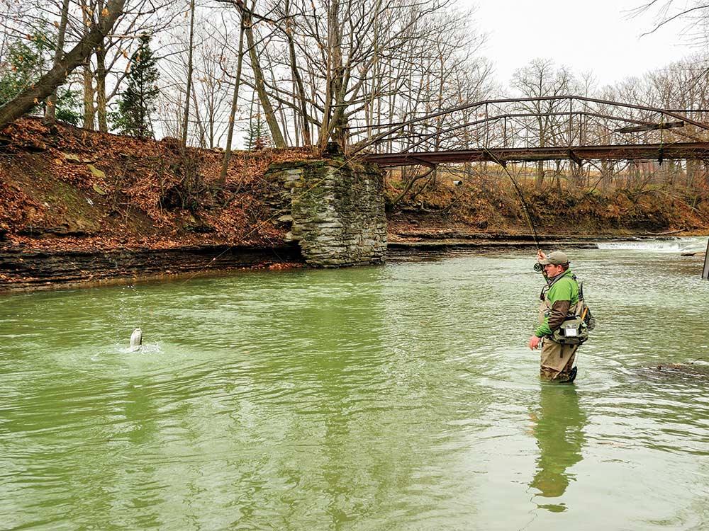 Fisherman wading Twenty Mile Creek