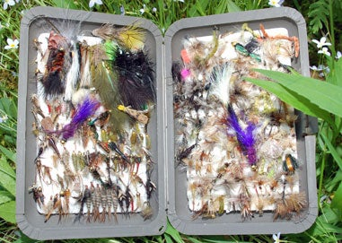 fisherman's collection of flys