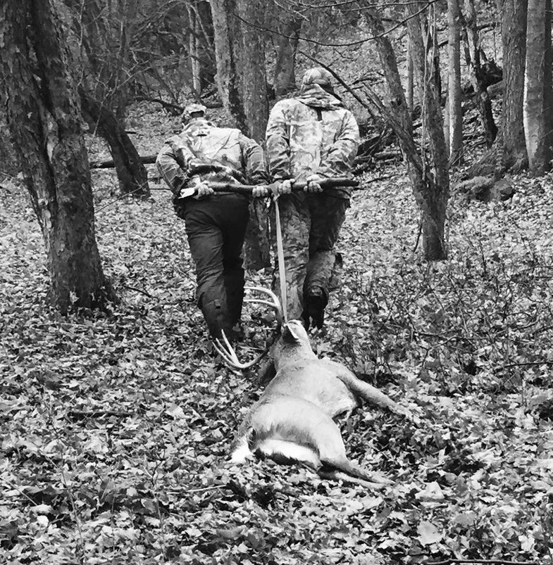By the Numbers: The Rut So Far in the Northeast