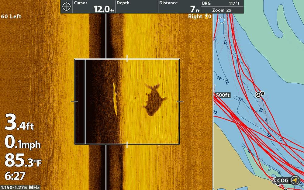 tarpon on sonar scan
