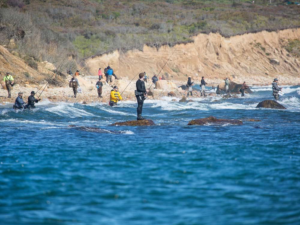 anglers fishing shore line