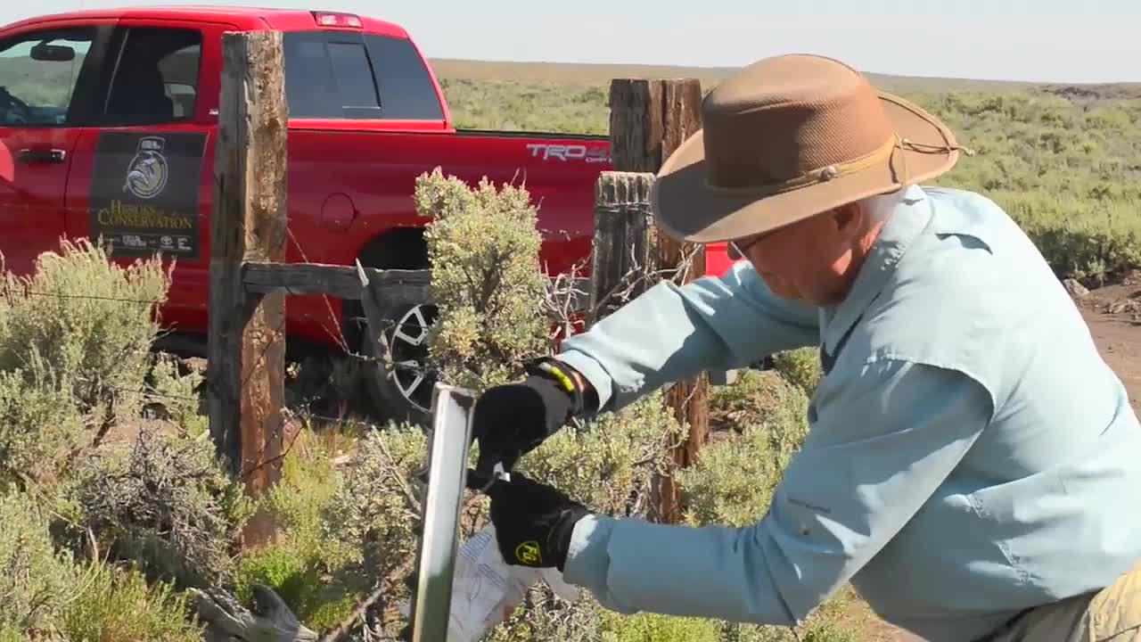 Heroes of Conservation Finalist: Improving Idaho Sage Grouse Habitat