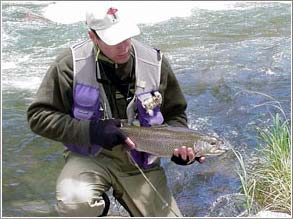 Spin Rod Trout: Ten Top Tips
