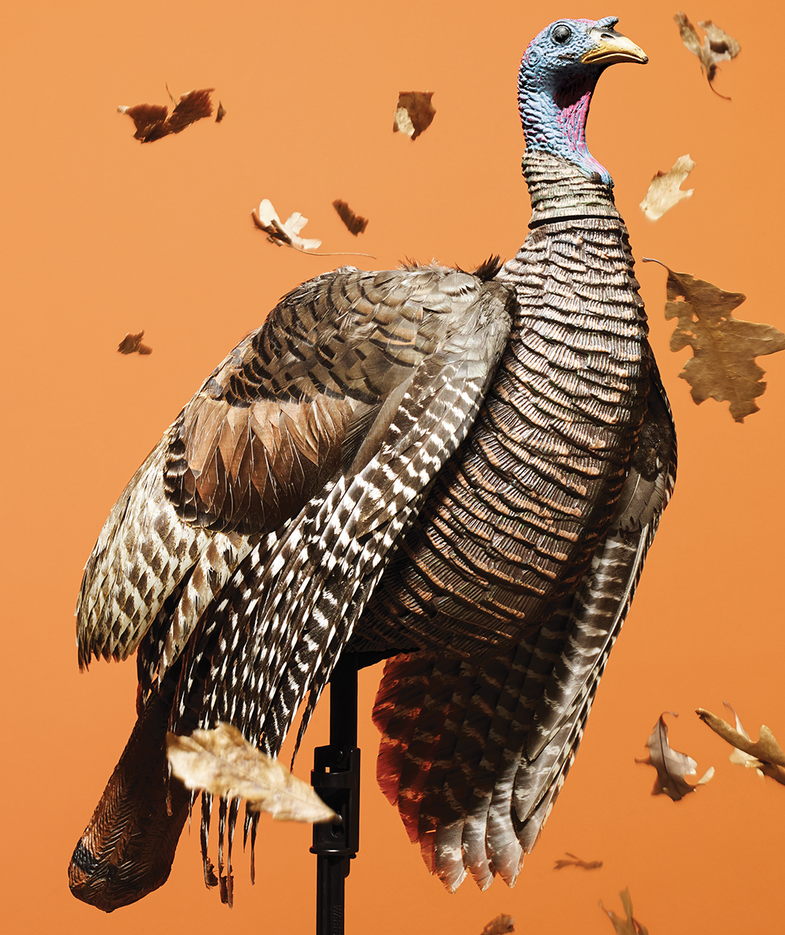How to Make Your Own Ultra-Realistic Turkey Decoy