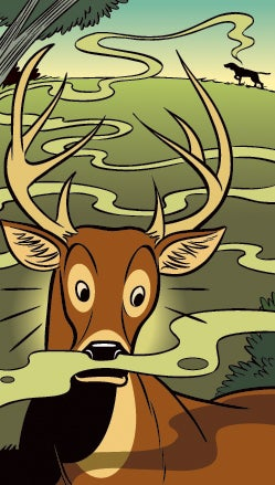 Ask Petzal: Does Dog Scent Spook Deer?