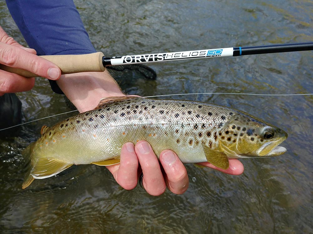Trout Fly Rod Buying Guide $750+