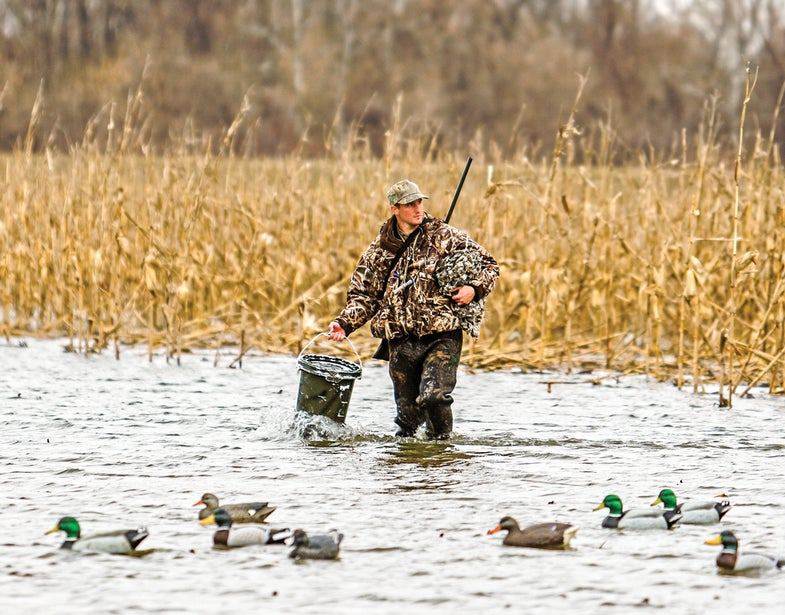 Duck Paradise: The Perfect Ponds