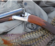 Pheasants and Steel Shot: A Good Combo, But Rough on Teeth