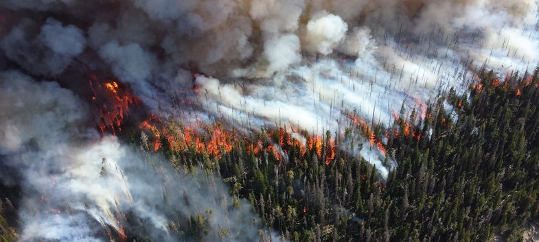 What's Next for the West After a Summer of Fire