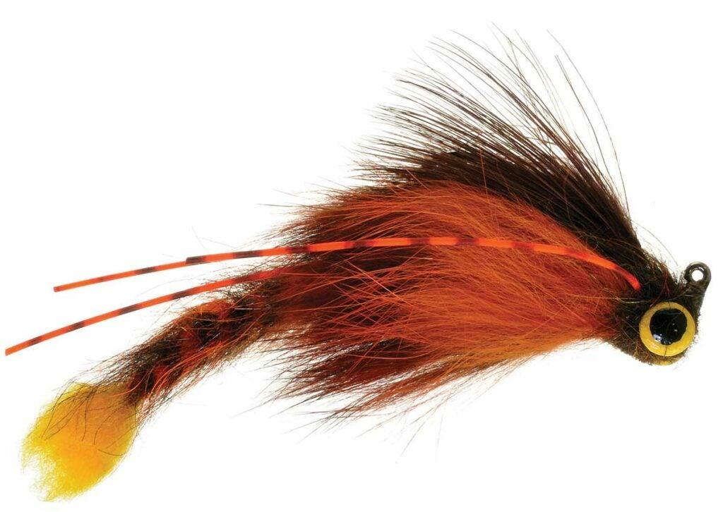 httpswww.fieldandstream.comsitesfieldandstream.comfilesimport2014importImage2010photo23Geezuslizard_zimmerman_crayfish-cmyk.jpg