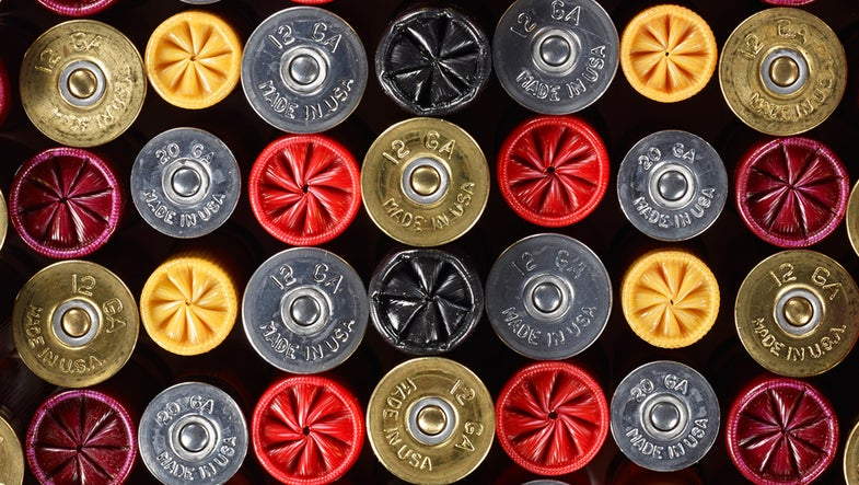 The Truth About Shotgun Ammo: 6 Questions Answered at Federal's High-Tech Range