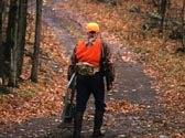 The Rut Hunter's Playbook