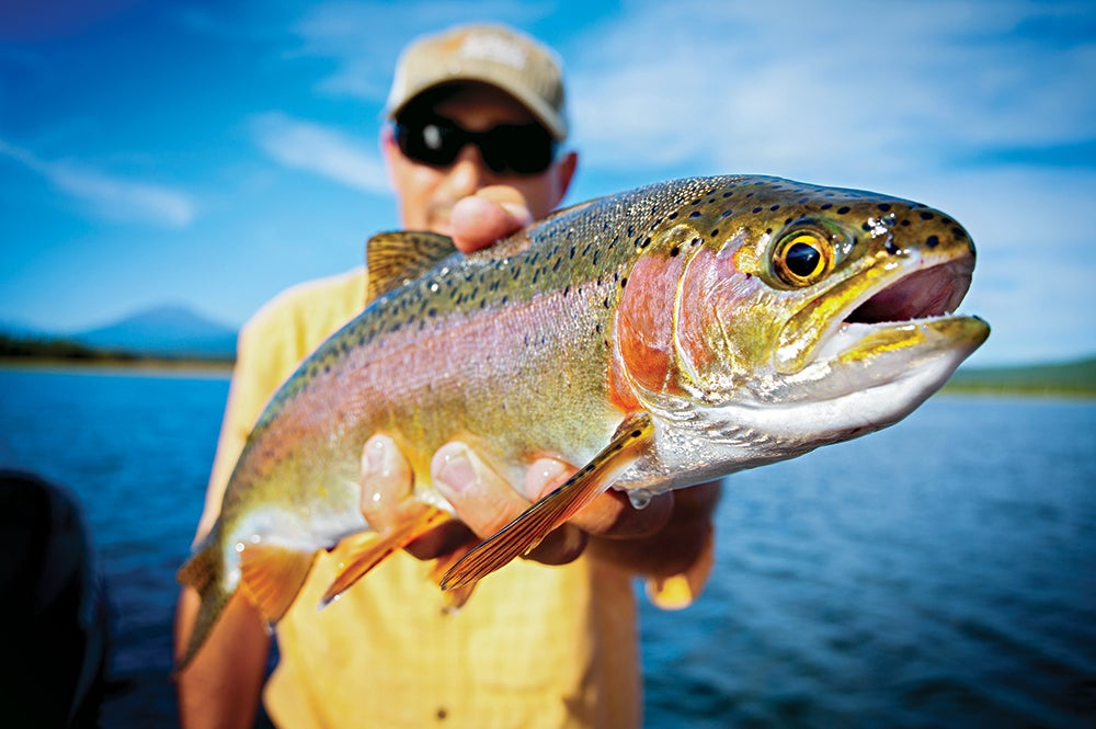 crane prairie reservoir rainbow trout