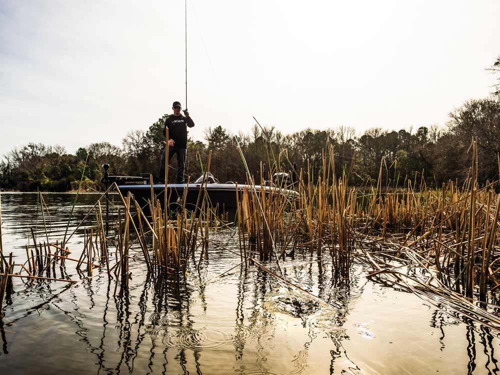 bass fishing in the weeds