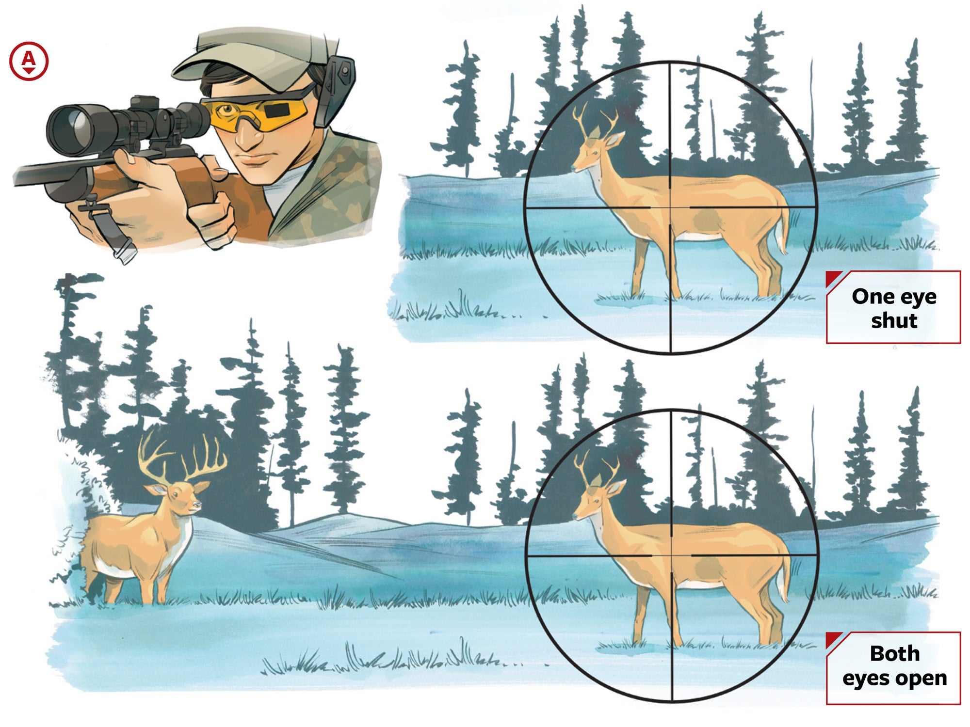 Off-Season Drill: How to See, and Shoot, More Deer