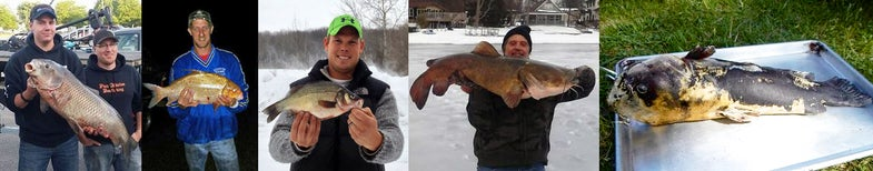 Meaty Michigan Quillback is Latest of Five State Records Broken in 2014