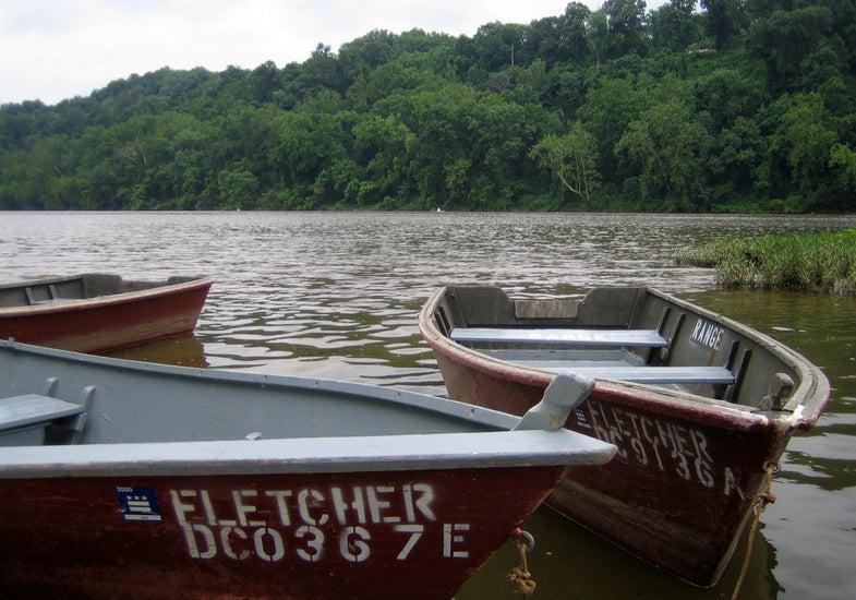 Potomac Fish Runs, Fletcher's Boathouse, and a Birthday