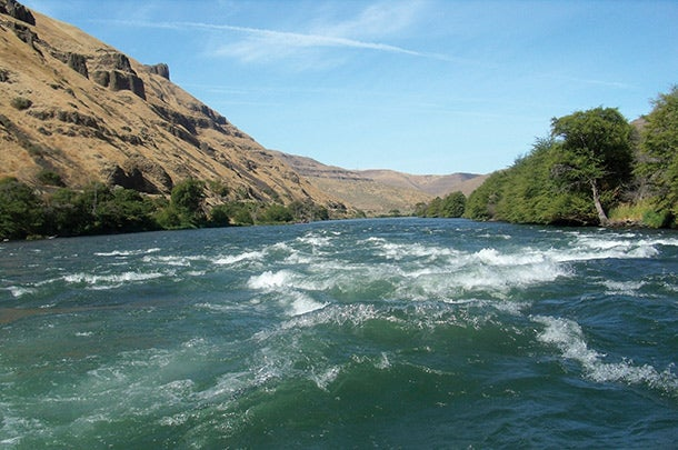 A landscape photo of the Deschutes River rapids. Water crests over itself in a rushing river.