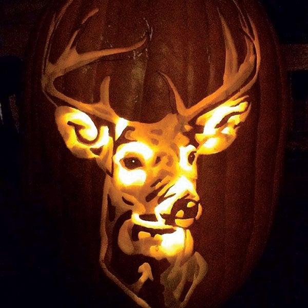 buck pumpkin