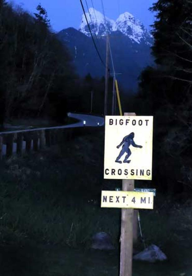 httpswww.fieldandstream.comsitesfieldandstream.comfilesimport2014importBlogPostembedMan_Pretending_to_be_Bigfoot_Hit_and_Killed.jpg