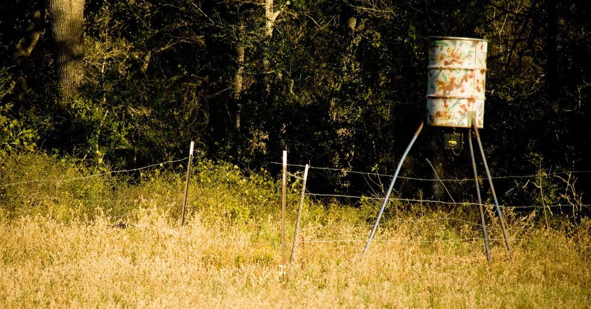 Top Mississippi Biologist Resigns As State Loosens Deer-Baiting Regulations
