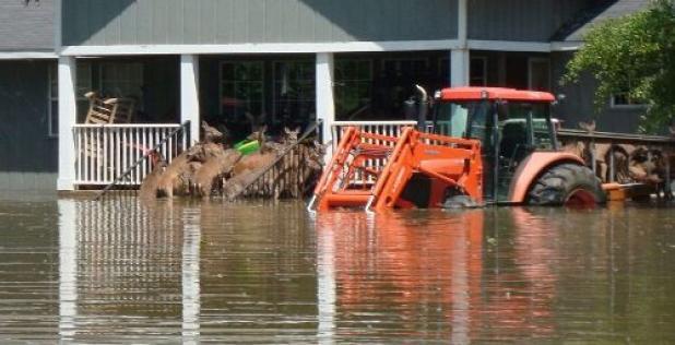 httpswww.fieldandstream.comsitesfieldandstream.comfilesimport2014importBlogPostembedFN_Flood_deer2.jpg