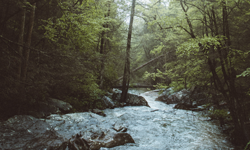 13 Facts About the Clean Water Rule All Sportsmen Should Know