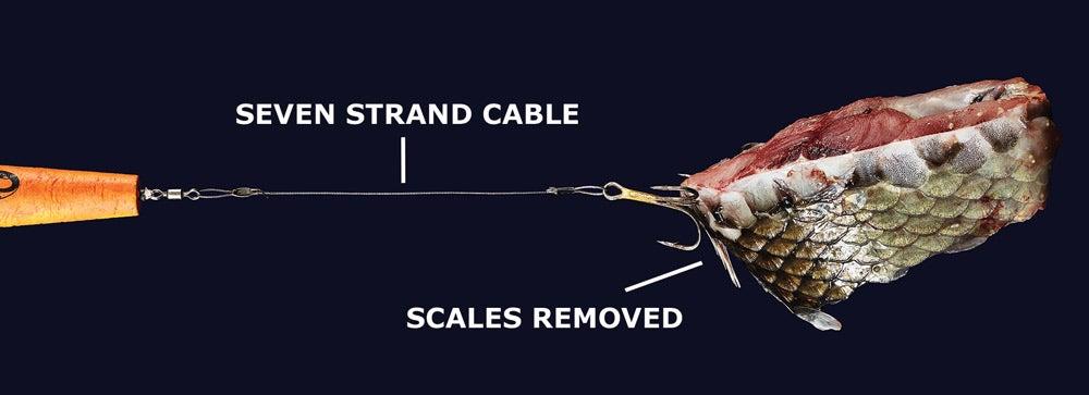 The Hi-Vis Cable Rig for Alligator Gar