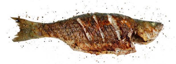 httpswww.fieldandstream.comsitesfieldandstream.comfilesimport2014importArticleembedfish_recipes_whole_grilled.jpg