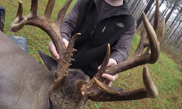 In Some Parts, It's Prime Time for Big Bucks