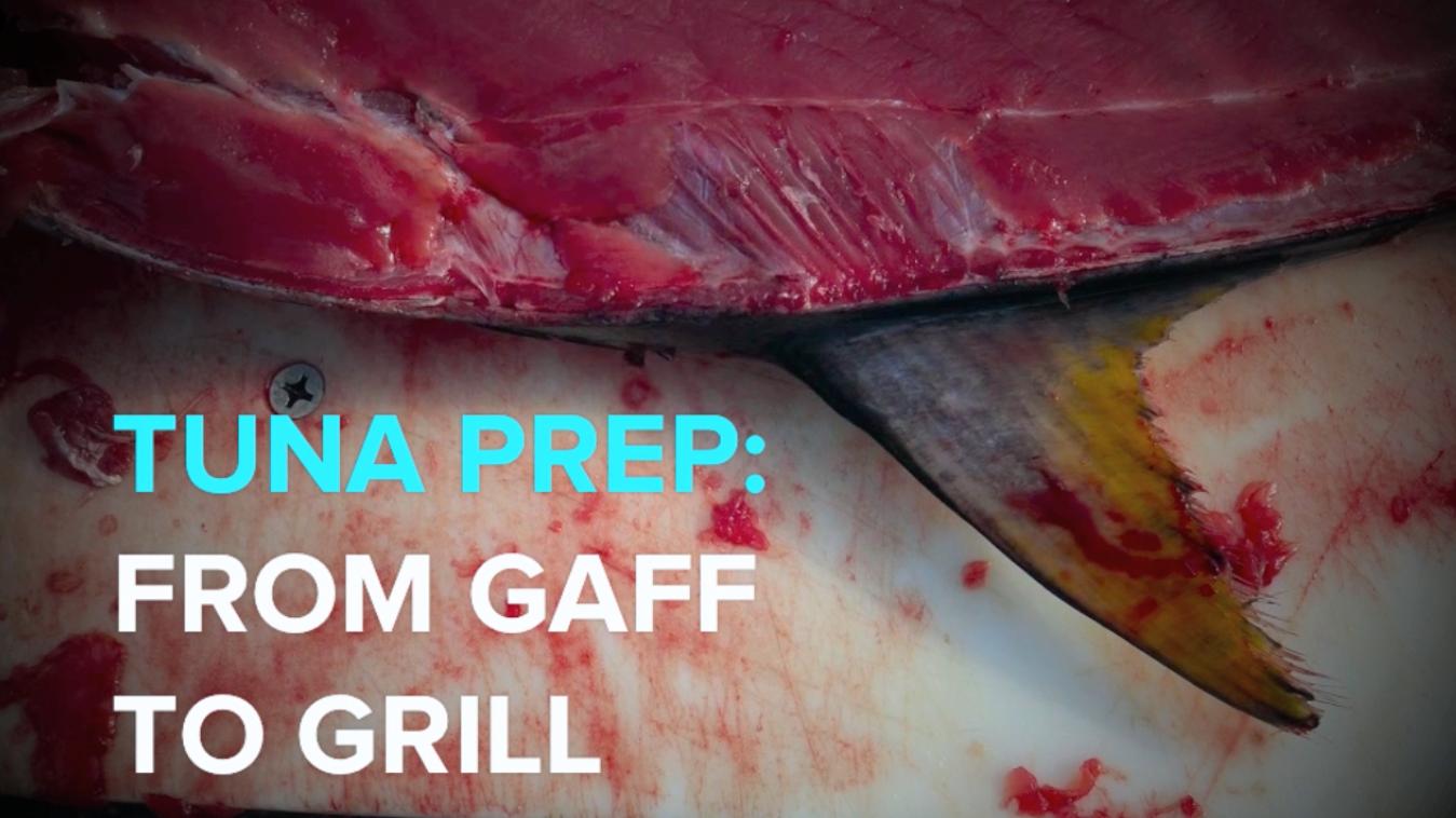 tuna, clean a tuna, saltwater fishing, fishing, clean a tuna, tuna fishing,