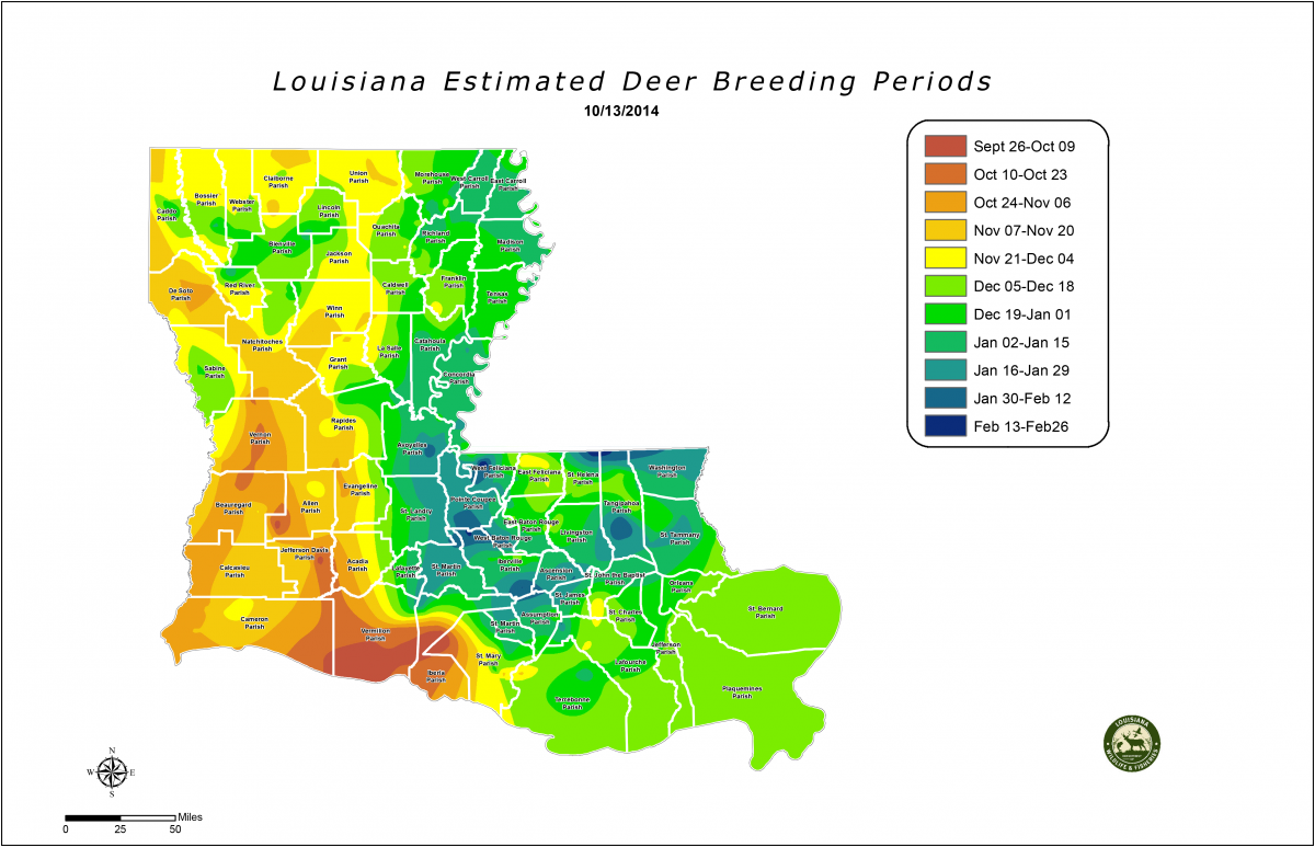 Trail Cameras Show Daylight Activity is Increasing, Hunting is Hot in Southwest Louisiana