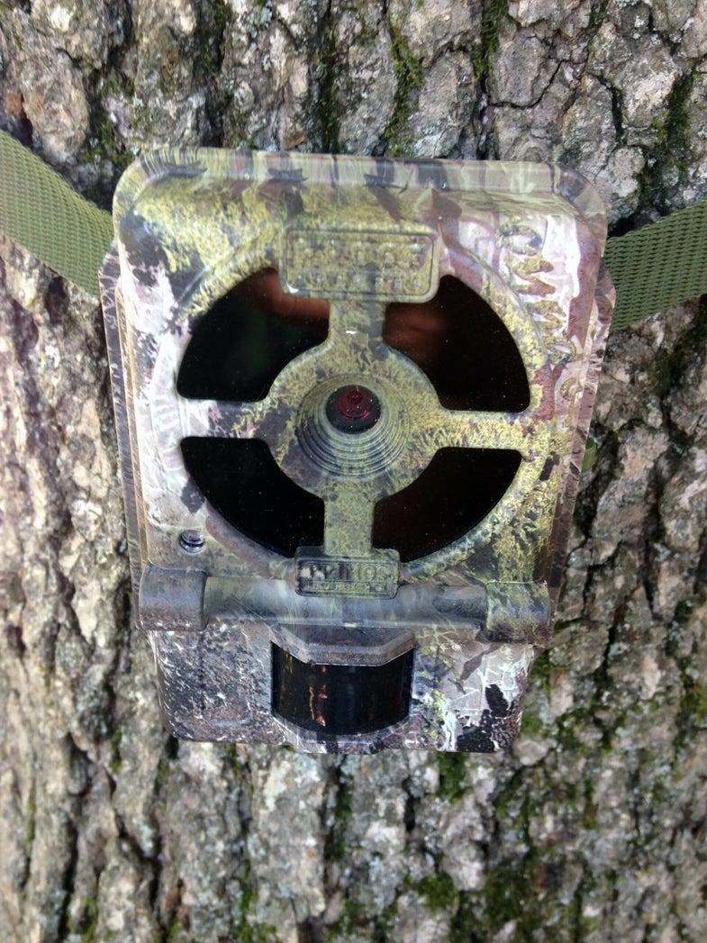 Primos Proof 02 Trail Camera