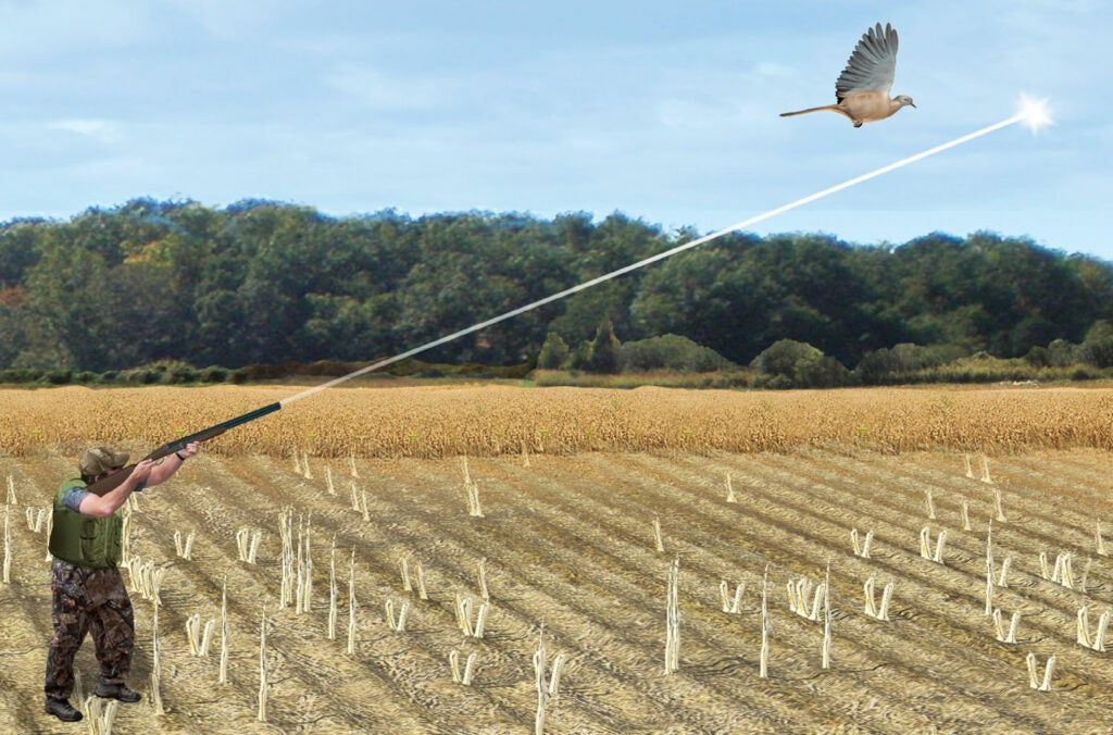 How to hunt for doves