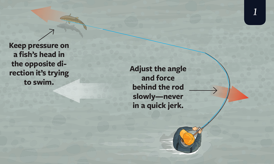 landing a trout, how to land a trout,