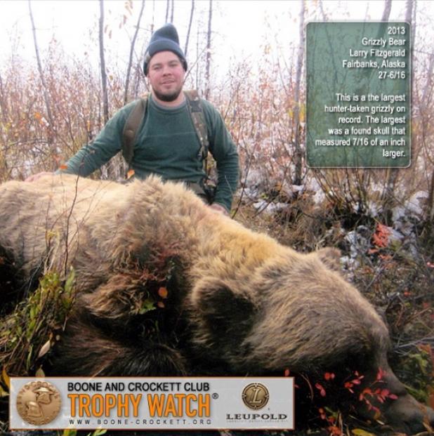 Largest Grizzly Bear Taken By a Hunter in Alaska
