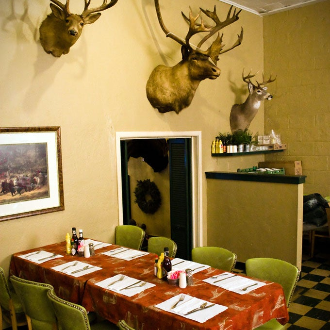 Londoners Are Learning to Eat Their Taxidermy. Sort of.