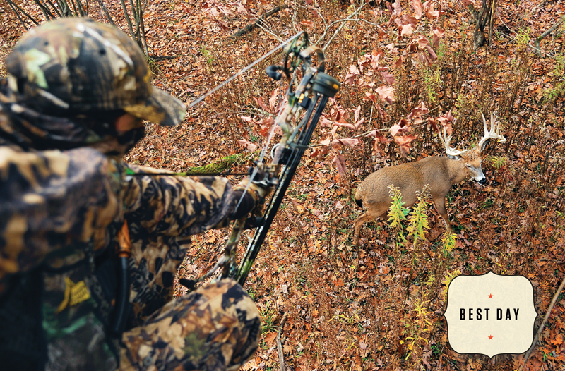 The Best Day of the Rut, 11/7: Let the Action Come to You