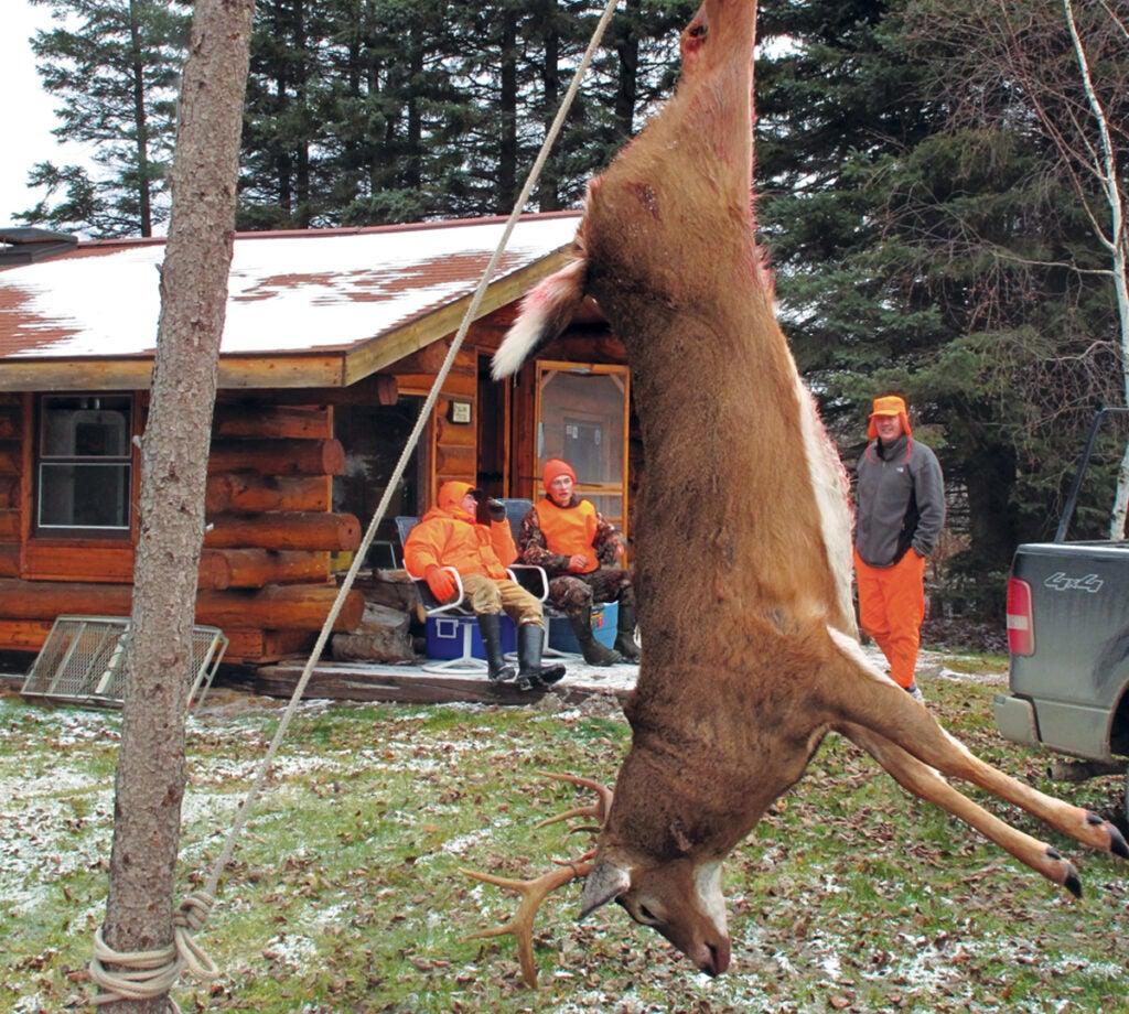 hang a deer