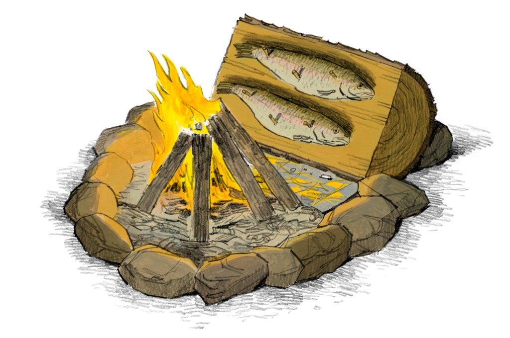 fish on a log