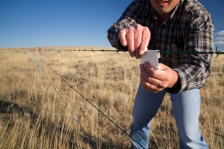 Hero for a Day Video: How Small Pieces of Plastic Can Save Hundreds of Sage Grouse