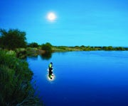 In the Black: How To Fish for Bass, Trout, Muskies, Flatheads, Snook and Walleyes After Dark