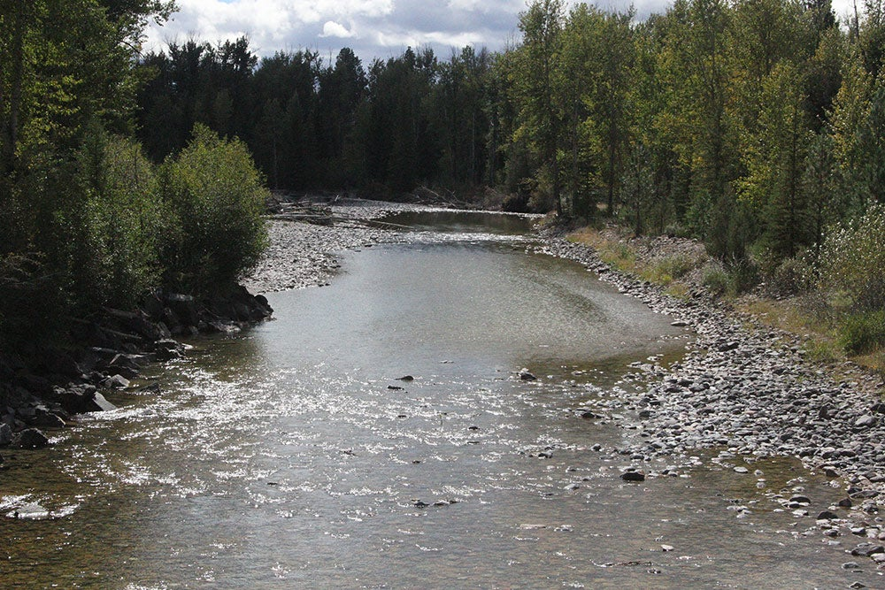montana stream access