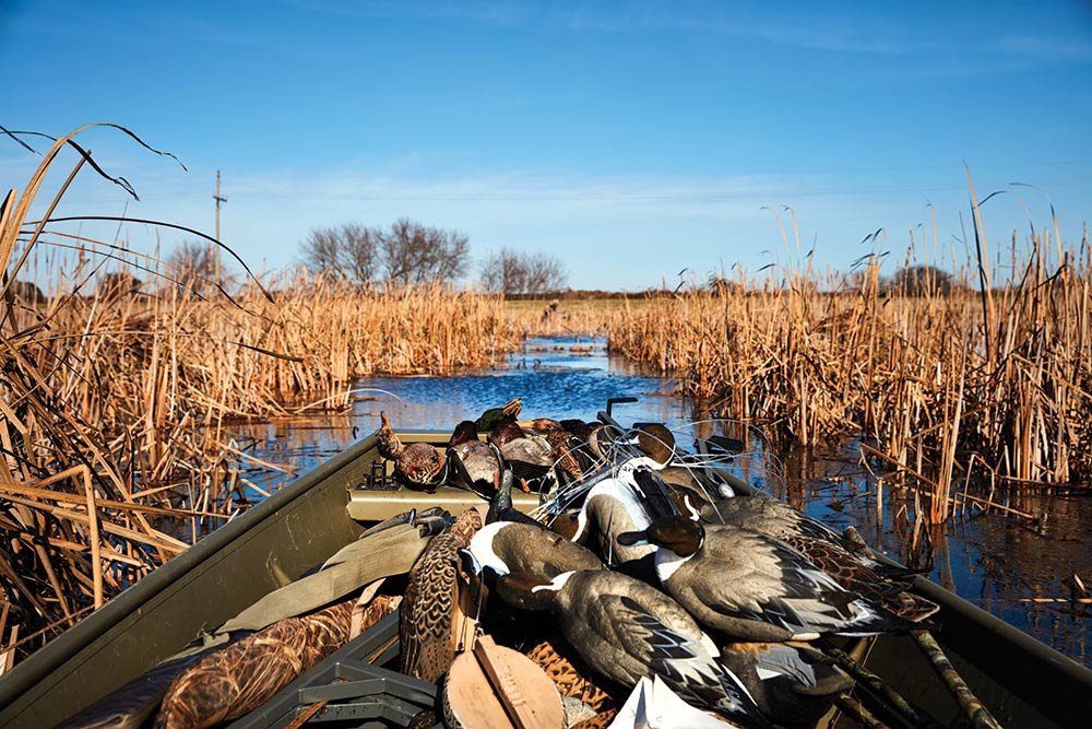 boatload of duck decoys