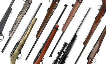 Want to Find the Best Squirrel Gun? Here are 10 Great Rifles for the Bushytail Hardwoods